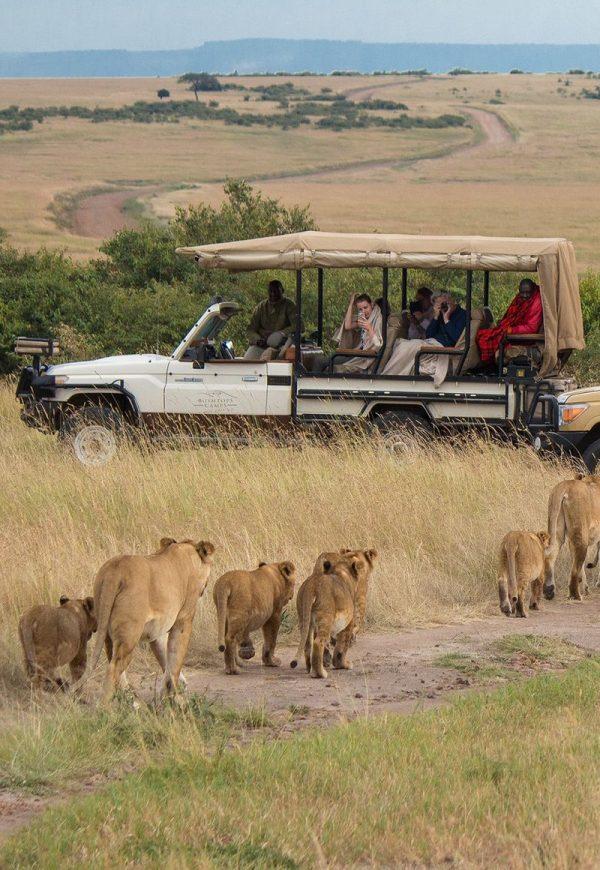 safari-tanzania