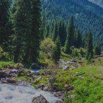 Alaska-reis