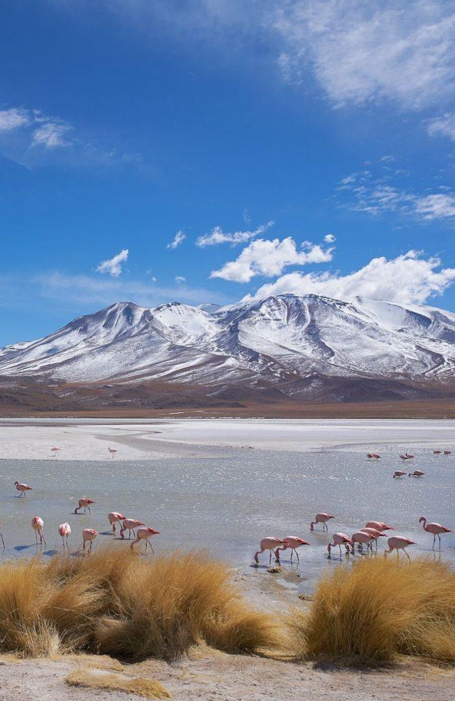 reizen-bolivia
